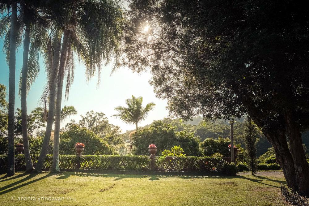 Temple area.jpg