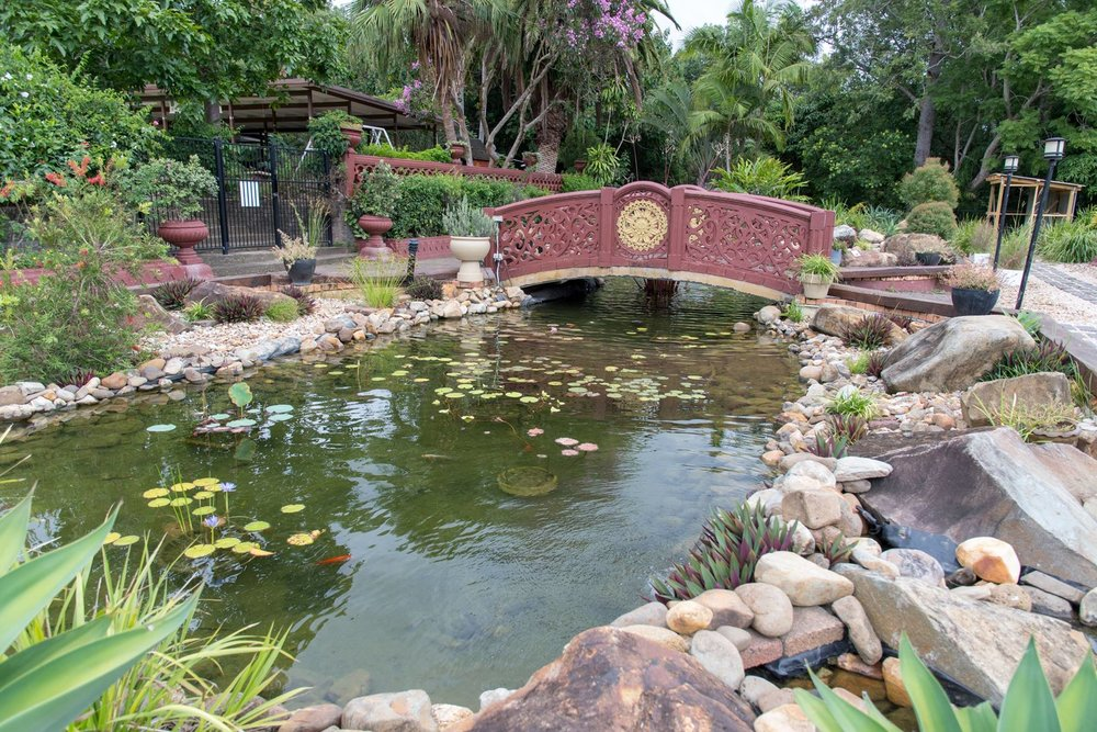 Temple pond.jpg