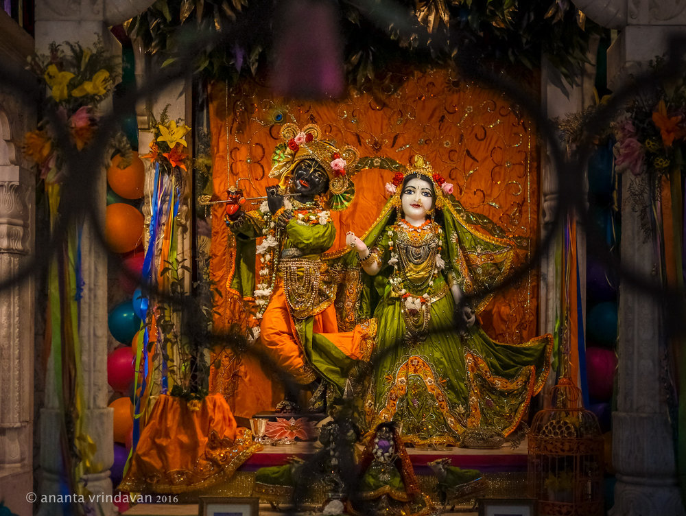 Our Deities Radha Govardhandhari at the temple; Photo: Anantha Vrindavan