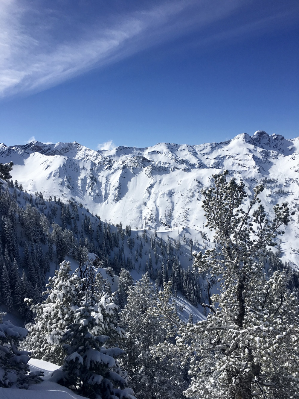 Wasatch between Little and Big Cottonwood  Photo: Zach Husted