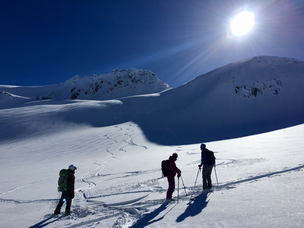 Gazing back at our fresh lines below Youngs Peak  Photo: Zach
