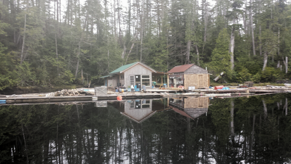 Floating cabins in Strachan Bay  Photo: Brian