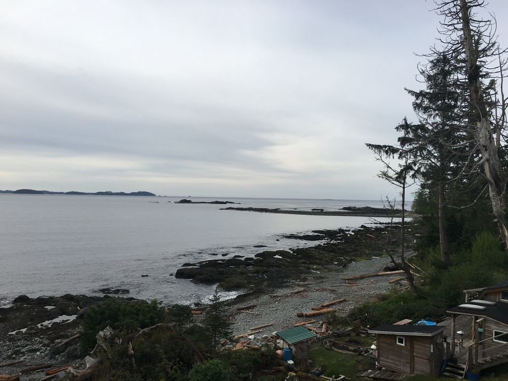 Heidi's backyard in Salmon Beach, Vancouver Island, BC  Photo:Zach