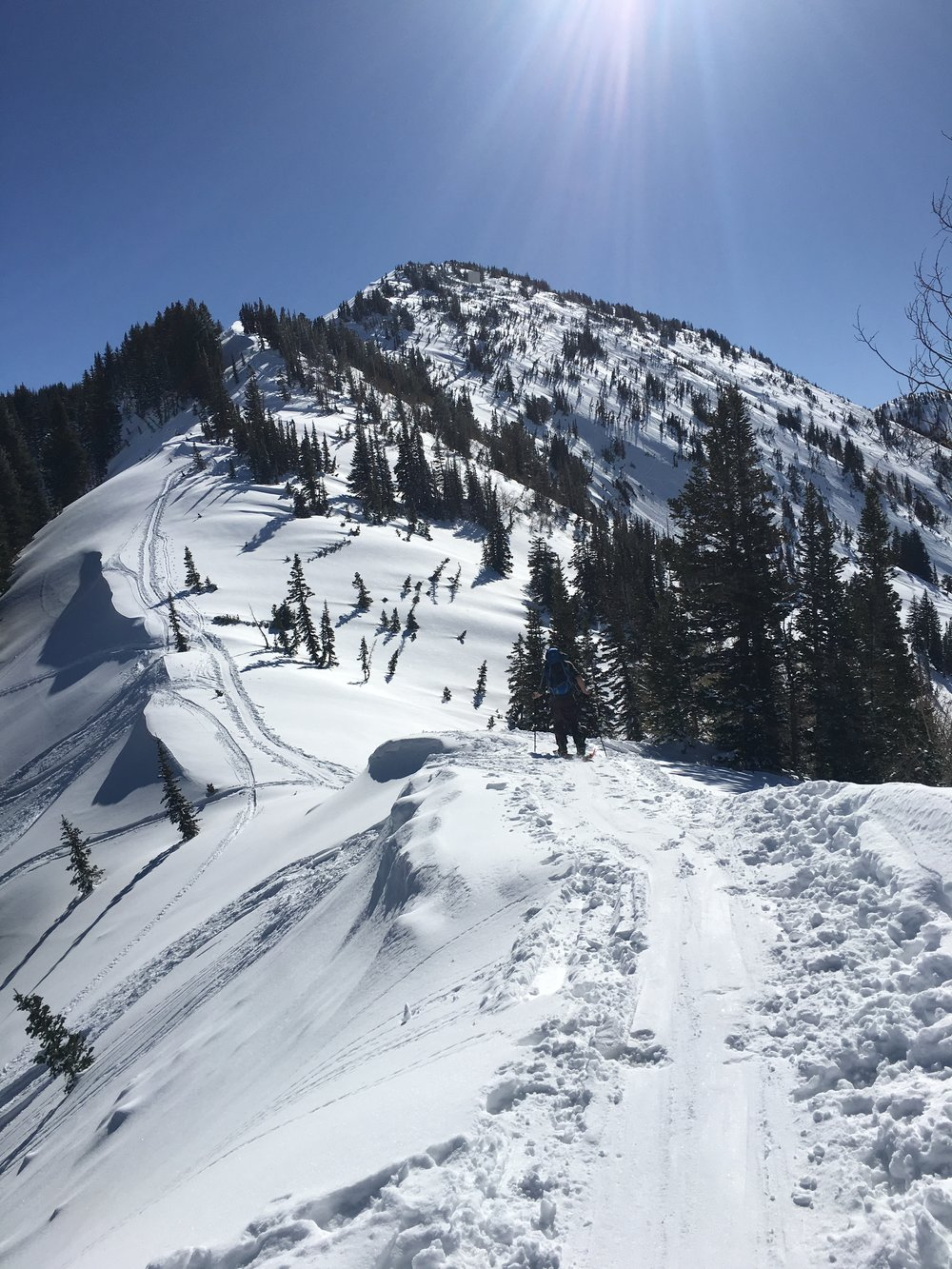 Photo: Patsy Marley Ridgeline by Zach Husted  Little Cottonwood Canyon, UT