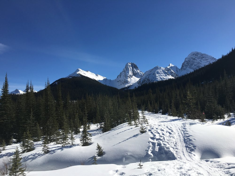 Kananaskis Country  Photo: Zach Husted
