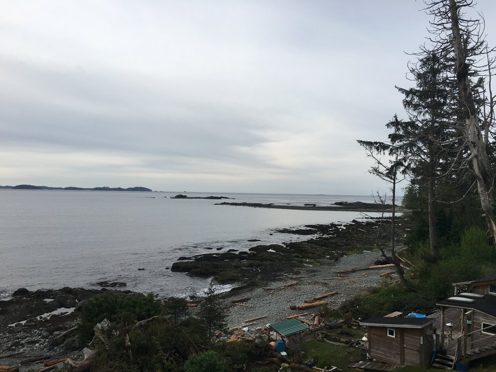 Heidi's backyard in Salmon Beach, Vancouver Island, BC  Photo: Zach Husted