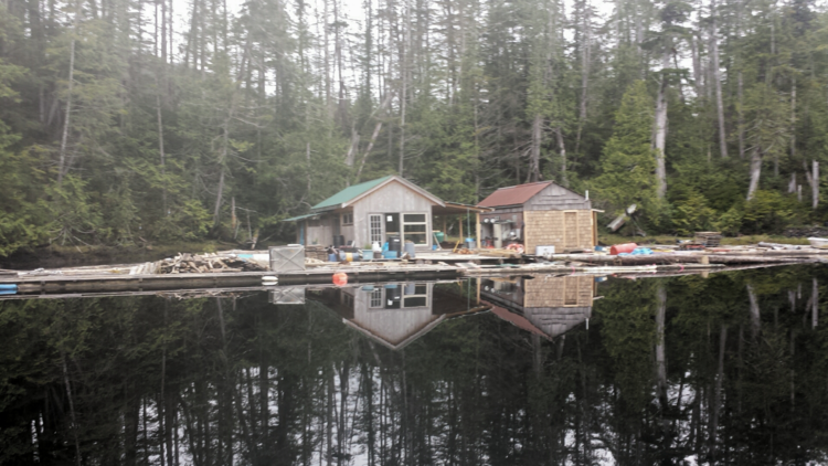 Floating cabins in Strachan Bay  Photo: Brian Stenerson