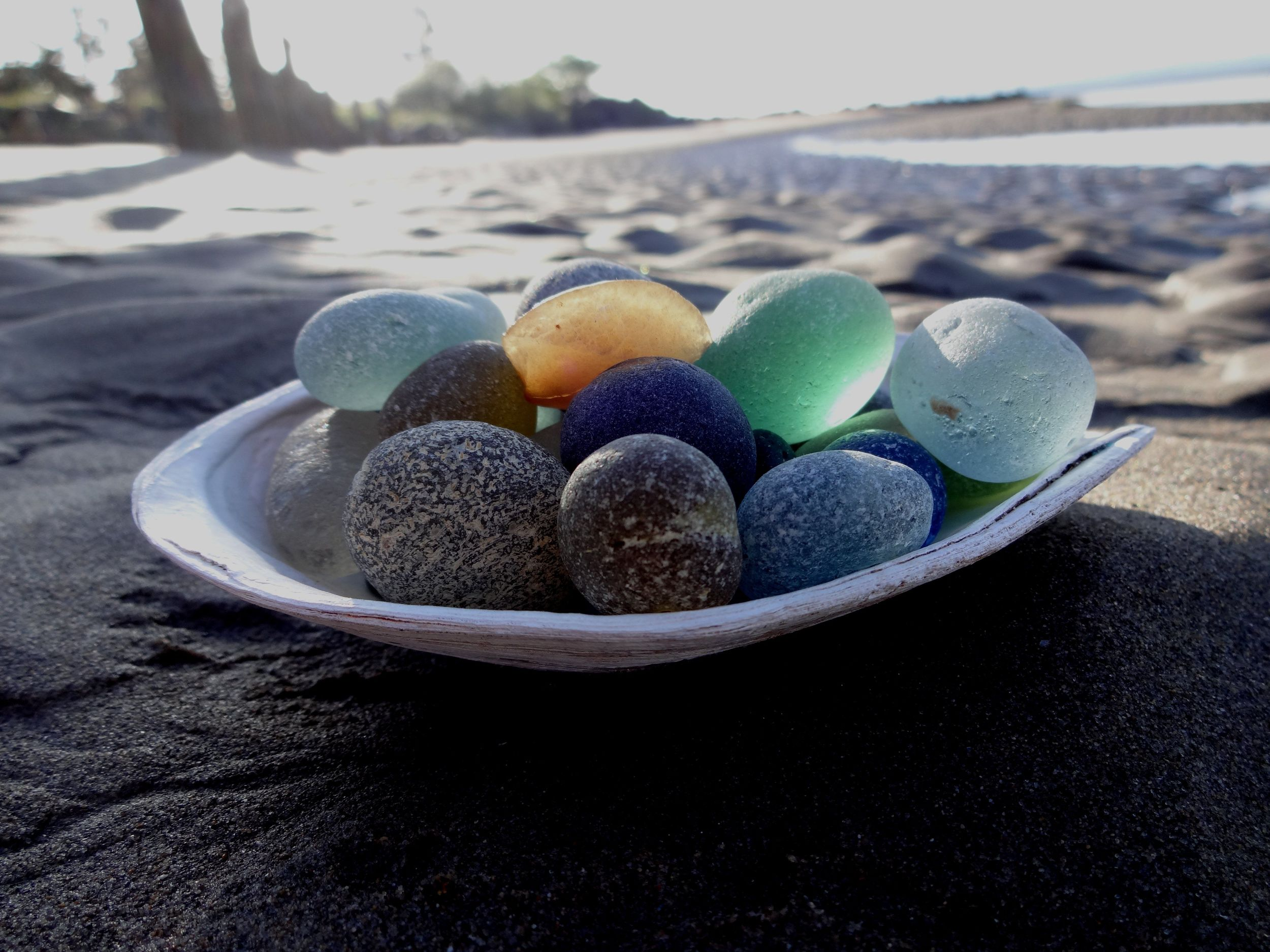 sea glass and clam