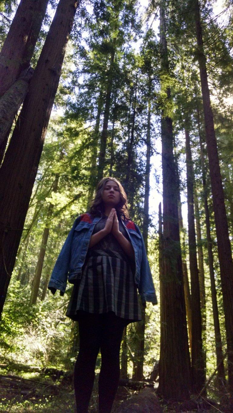 sophia redwoods