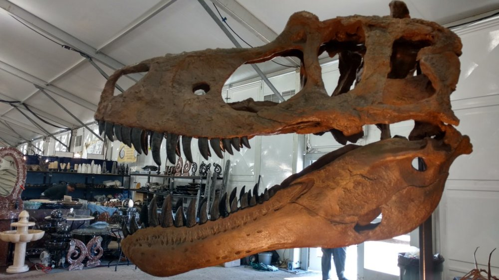 Dinosaur and fossil displays are king at the 22nd Street show