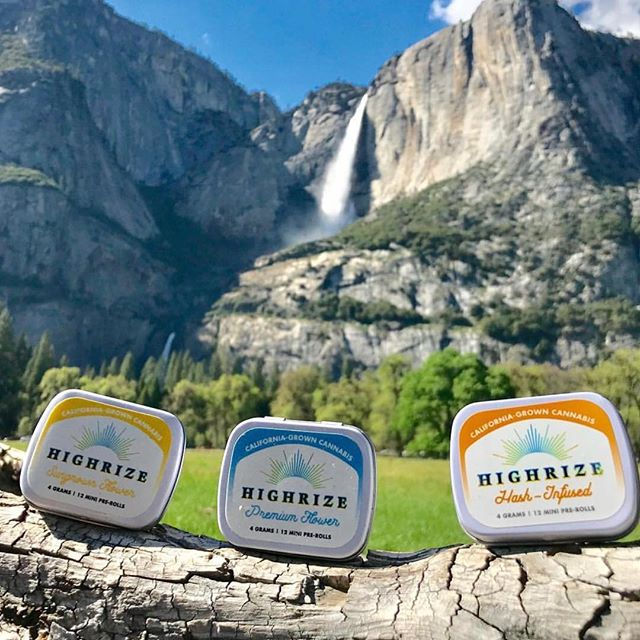 Stoked to have @highrizeca Pre-Rolls back on our shelves! In addition we have an awesome in-store promo running on their incredible Mini-Tins. Ready for use in Hash-Infused & Premium Flower options. Check the  announcement bar on the site for more details! 💨 💨 #sffogg415 #dispensary #delivery #AdultUse #Recreational #wax #sf #flowers #medicalmarijuana #sativa #indica #hybrid #vape #vapecart #vaporizer #shatter #concentrates #c02 #painrelief #edibles #medicine #insomnia #sanfrancisco #marijuana #cannabis #sleepaid #PatientAppreciation