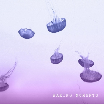 WAKING MOMENTS - SELF TITLED E.P. / RELEASED MAY 12TH, 2015