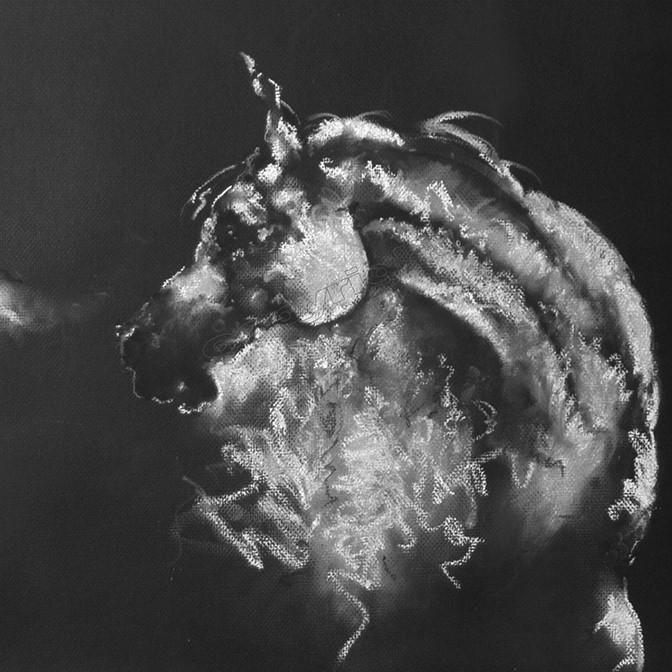 ab15-Moon_Horse (2).jpg