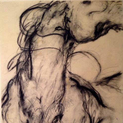 ab17-Horse+Study+#12 (2).jpg