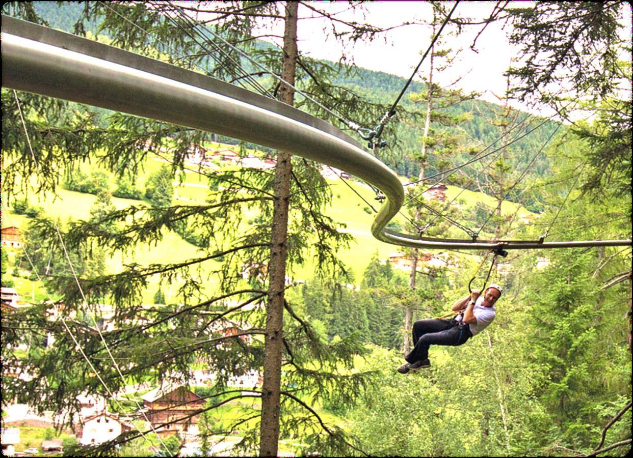 roller coaster zip line kletterwaldusa