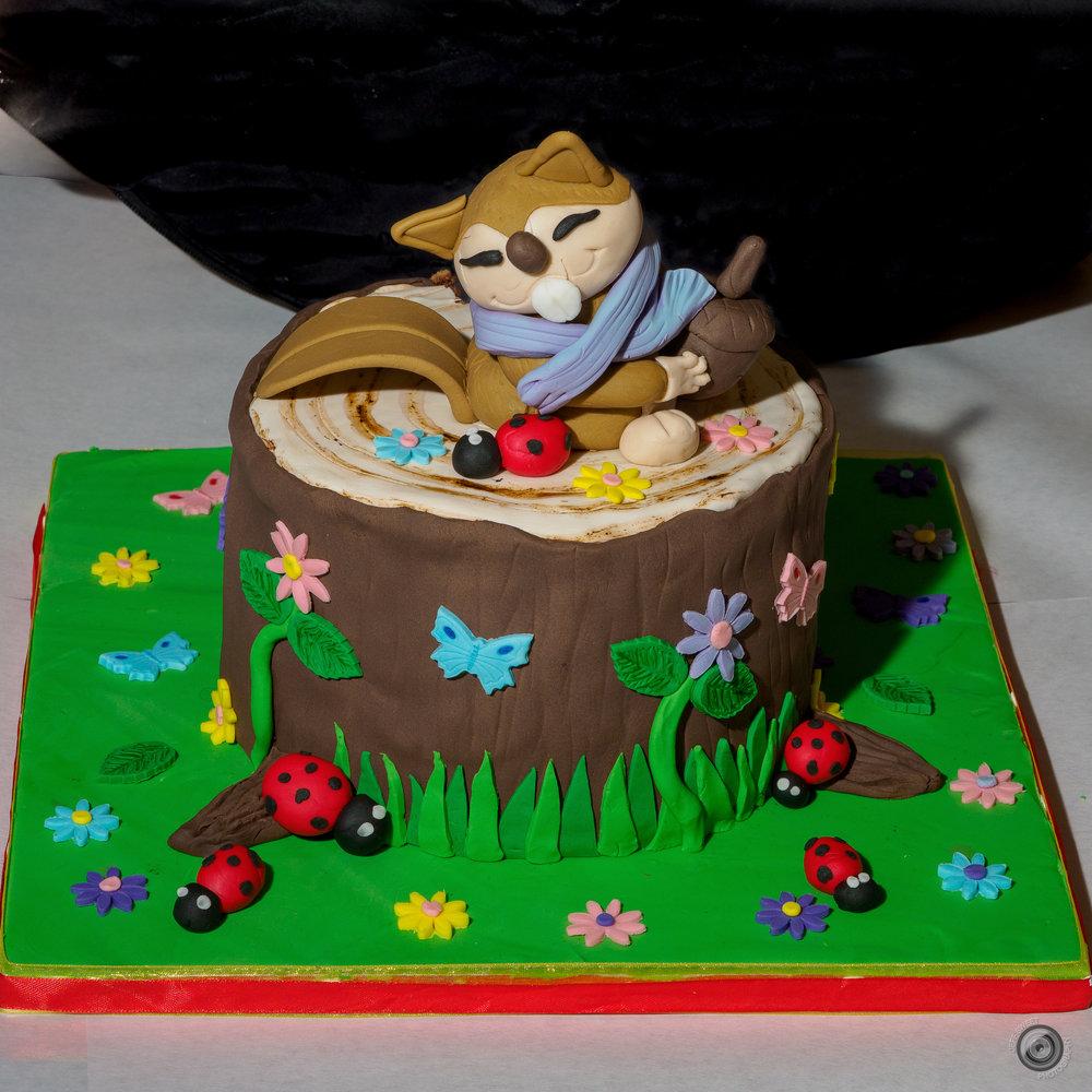 2018 Cake-Off4Kids-18.jpg