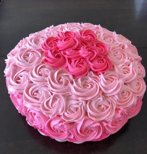 Ombre roses.jpg