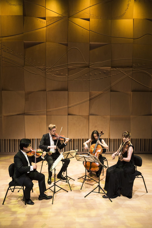 SML Flinders Quartet 2018 playing photo credit Pia Johnson.jpg