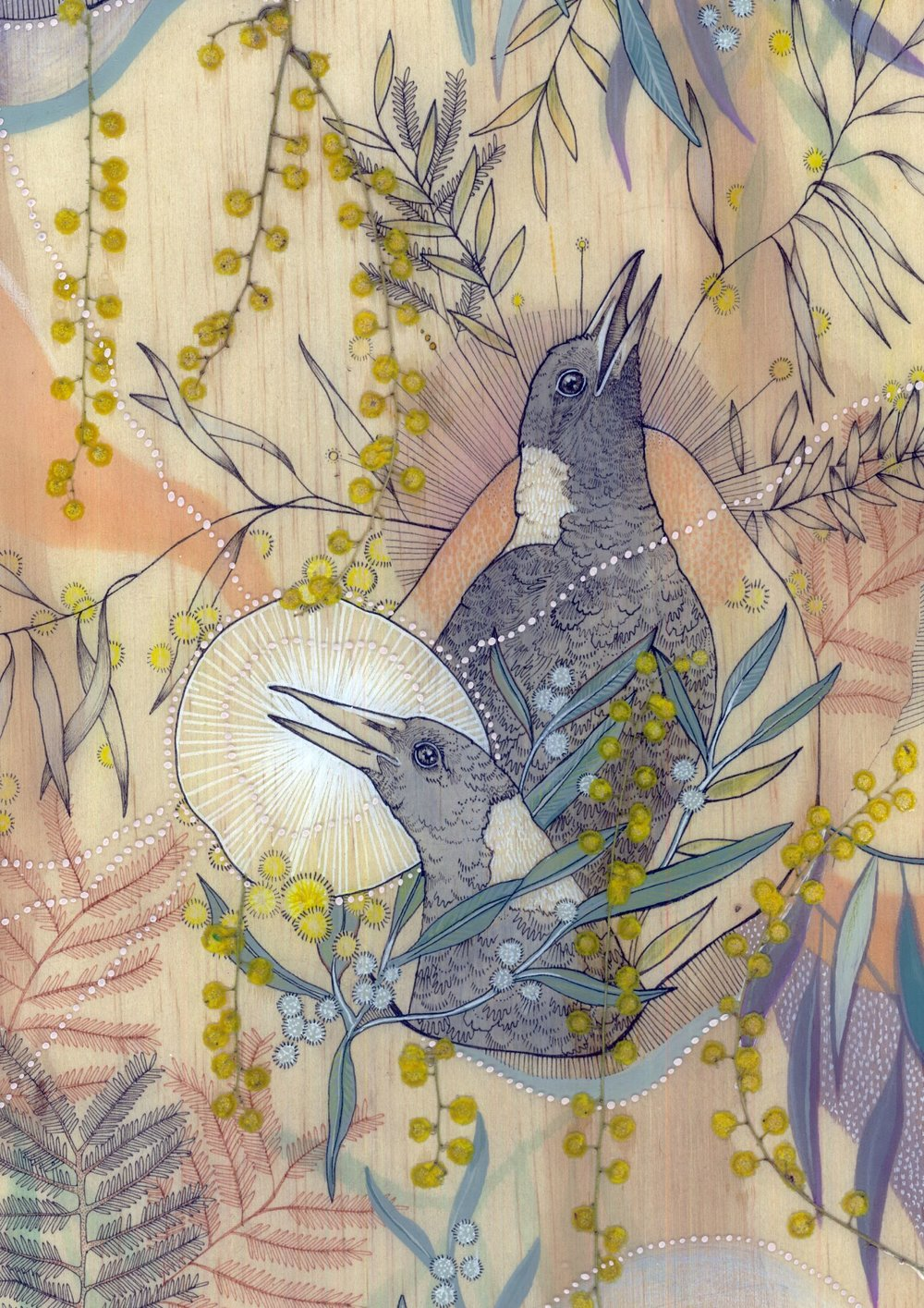 Mia Emily Freeman,  Warbles from within the Wattle