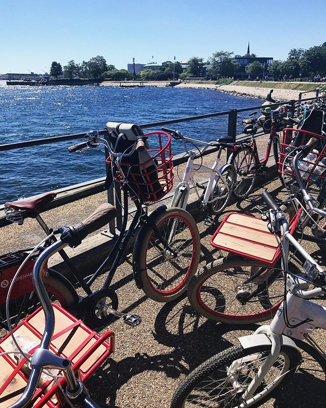 Visiting the Little Mermaid on our Must See Tour #cyclingcopenhagen #copenhagen #copenhagenvisitorservice #rideinstyle #denmark #picoftheday #summer #littlemermaid #visitcopenhagen #visitdenmark #cycling #bycicle