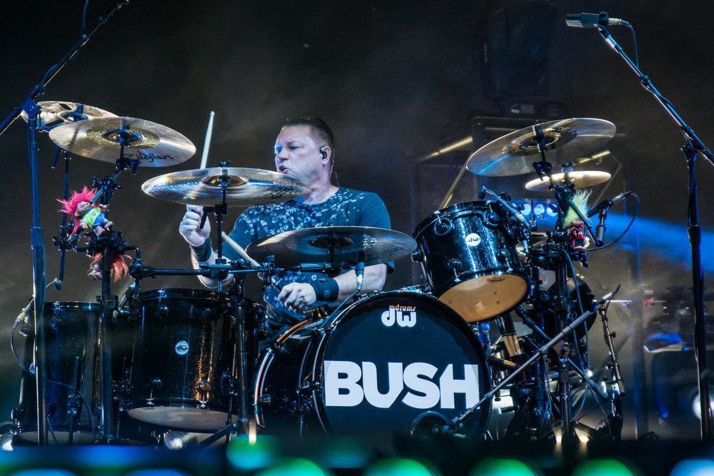 Bush-43.jpg