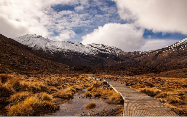 Tongariro Crossing: It's got to be good for you.
