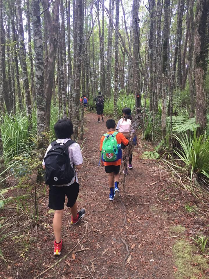 Hunua Falls Hiking Trip 2018