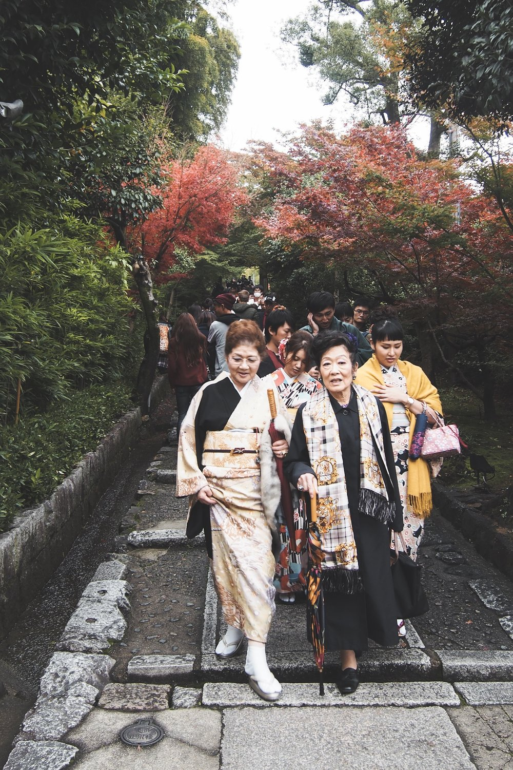 Japanese women in traditional Kimono in kyoto during the fall