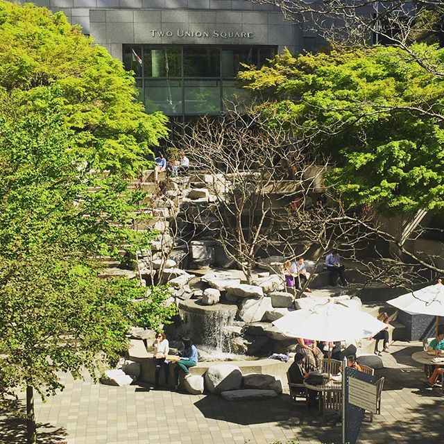 It's a beautiful day in the courtyard at Marco Two Union Square. ☀️🌿🌷 #marcotwounionsquare #unionsquare #seattle #seattlelife #downtownseattle #seattlehair #seattlesalon #seattlesun