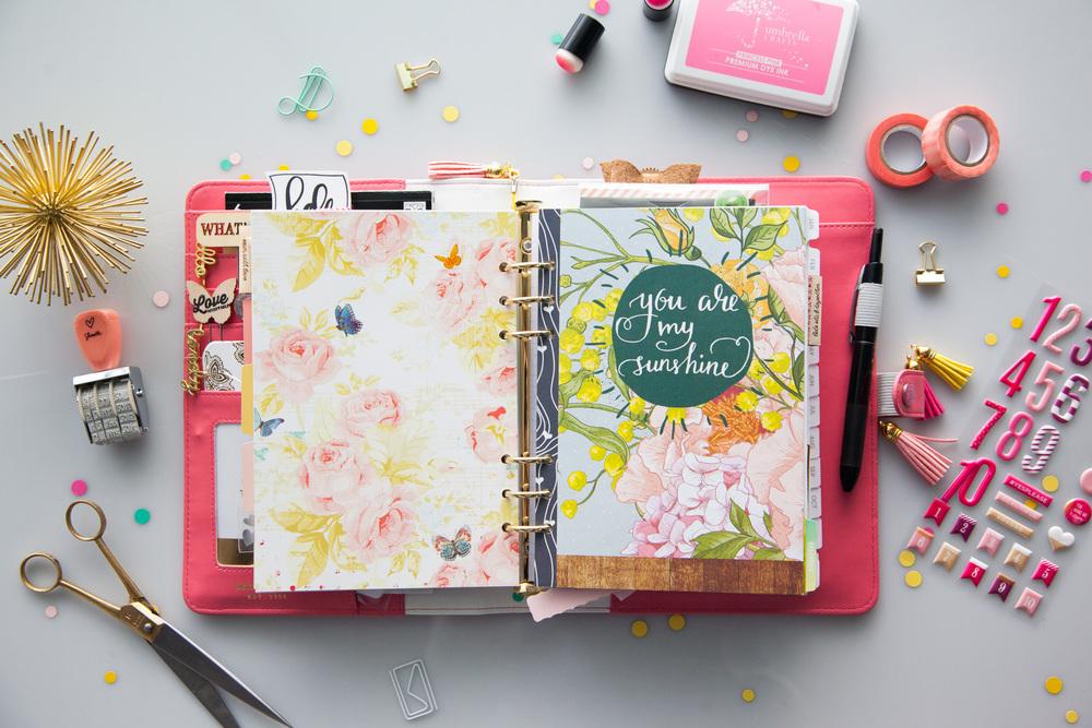 Pink webster's pages planner.jpg