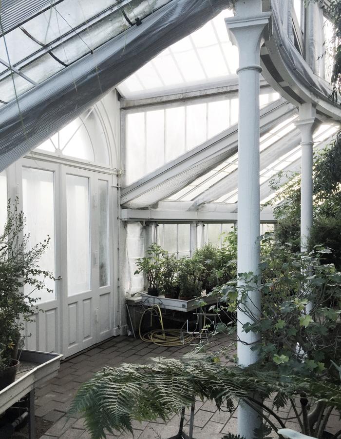 botanisk2.jpg