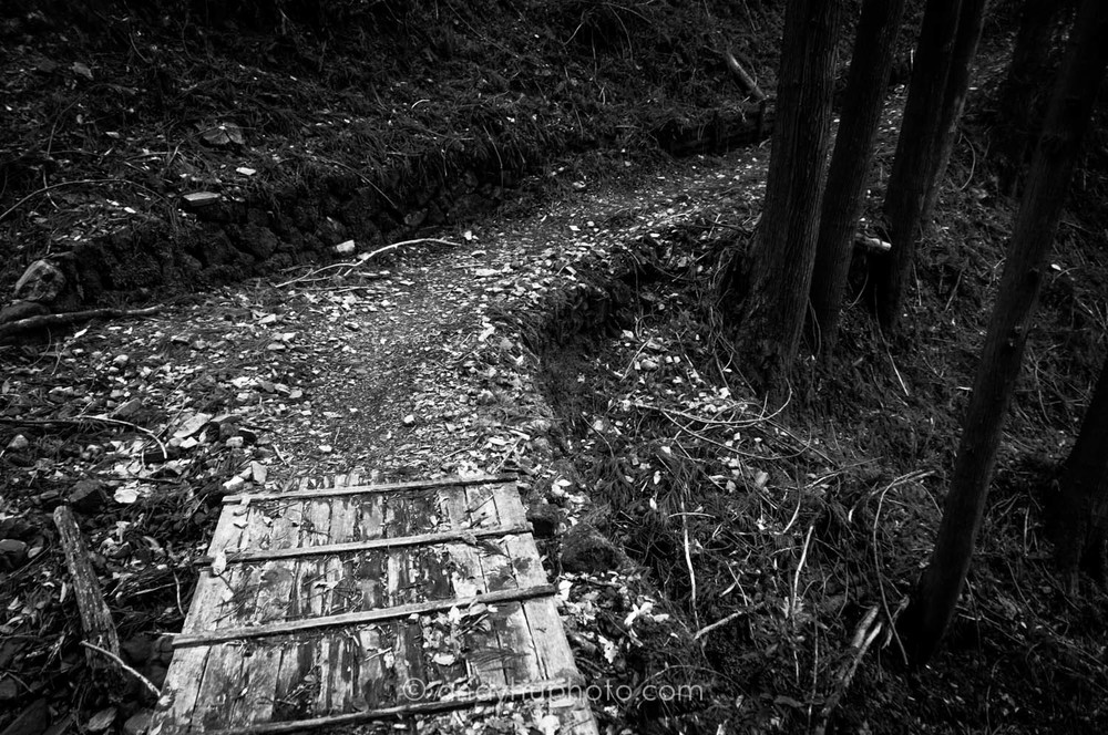 Wooden bridge-Kumano Kodo Trek