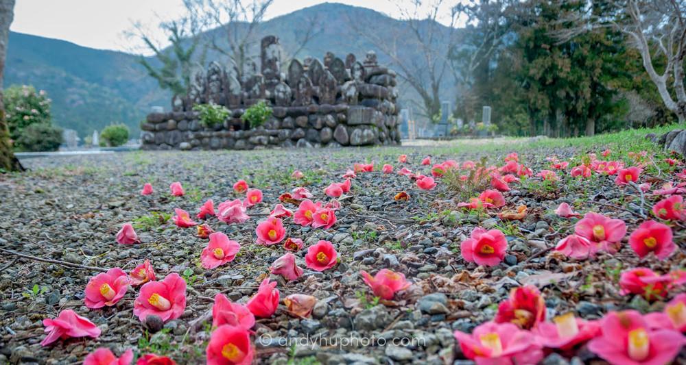 Chikatsuyu burial ground