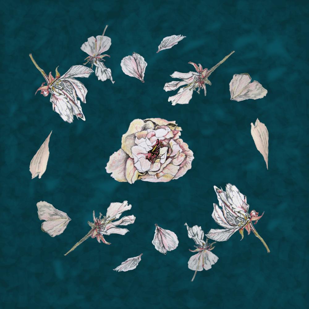 flowers-pattern-olluna.jpg