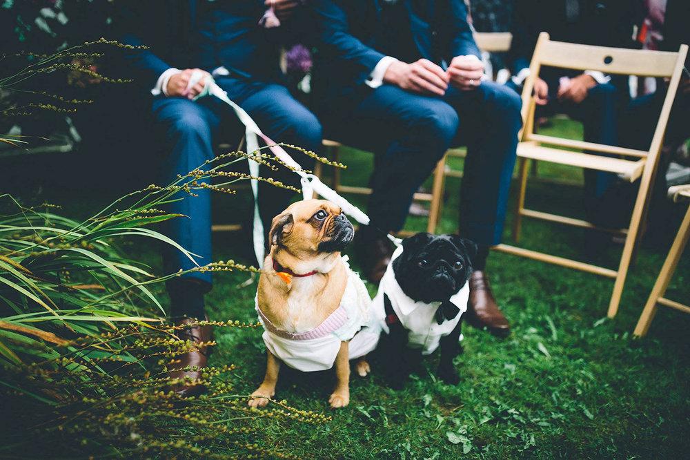 Real wedding at Pengenna Manor in Cornwall wedding venue Hannah & Liam 04.jpg