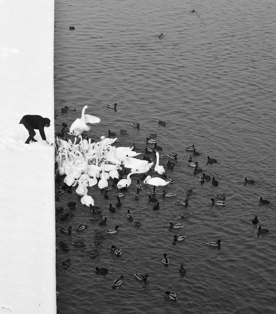 pikeys :     Photography by Marcin Ryczek , Krakow