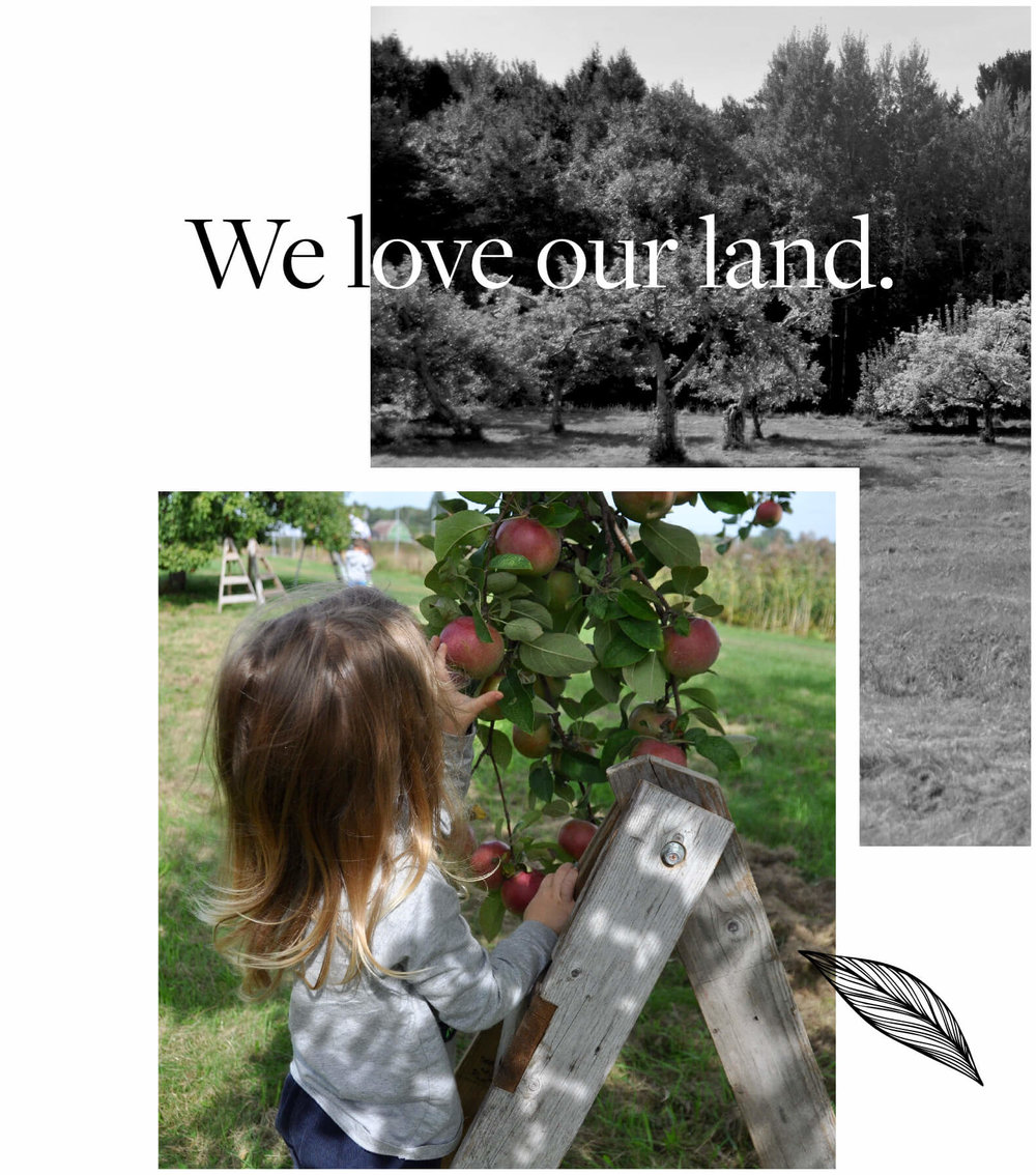 We Love Our Land.