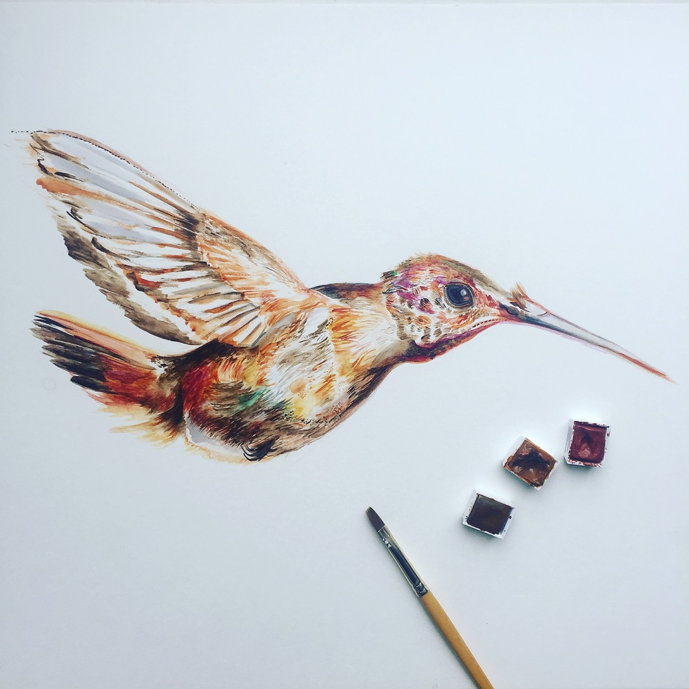 Watercolour Hummingbird | Bird Art | Hummingbird Art