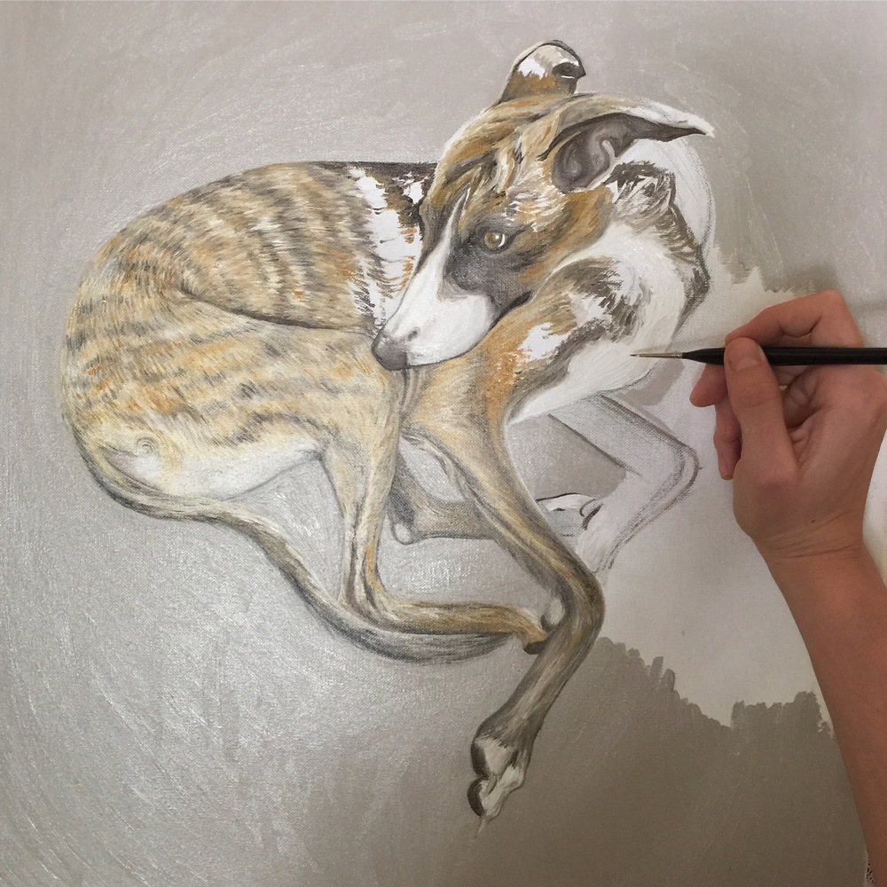 Painting A Whippet | Oil On Canvas | Dog Art | Pet Portrait