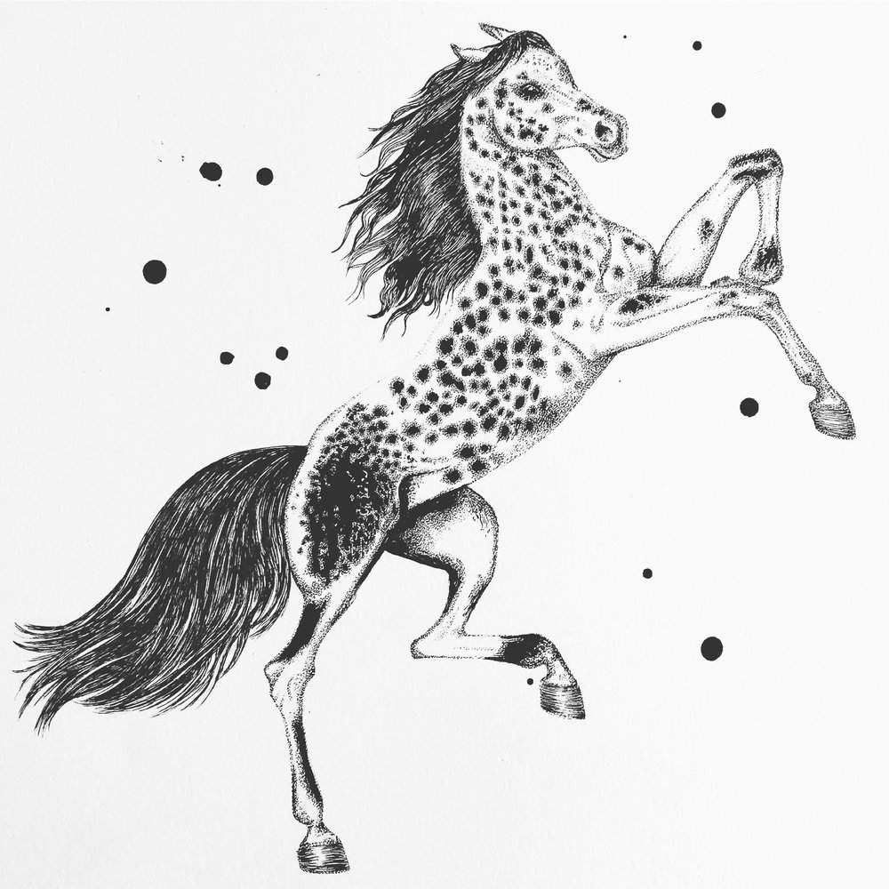 Monochrome Horse | Horse Art | Horse Drawing