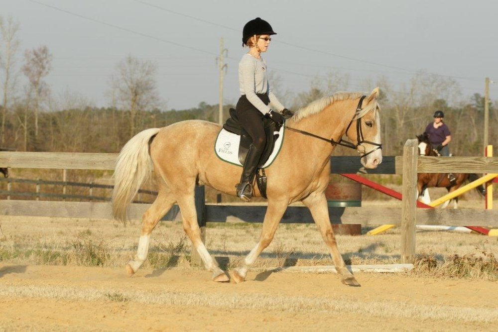 Palomino Horse| Horse Art | Art Commissions
