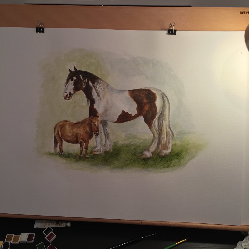 Watercolour Horse | Art Commissions | Horse Artwork
