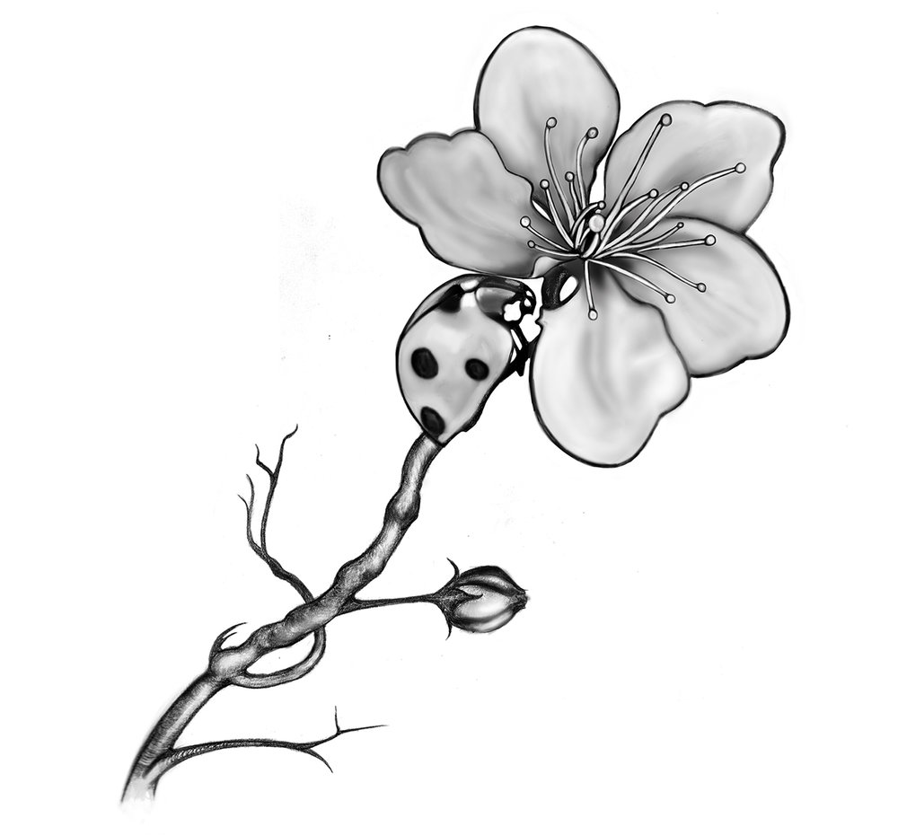 Ladybird and flower tattoo design