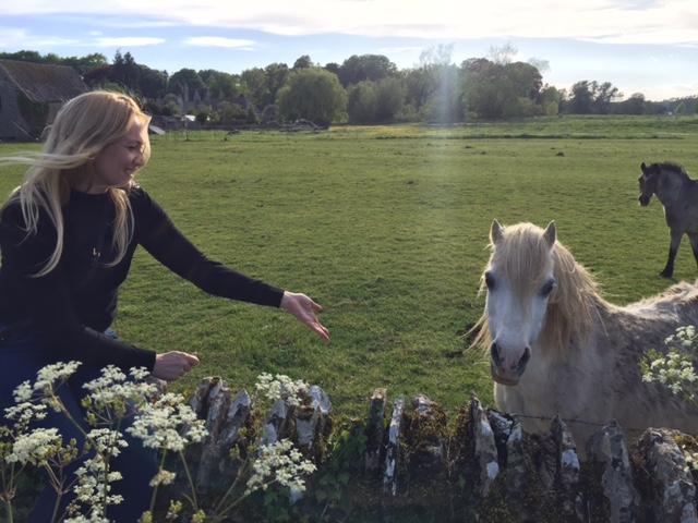 Caroline Towning, Grey pony The Cotswolds