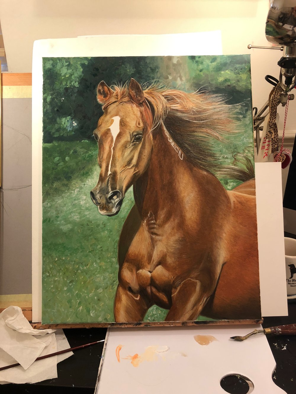 Arabian Horse Art | Paint Horse | Horse Paintings on Canvas