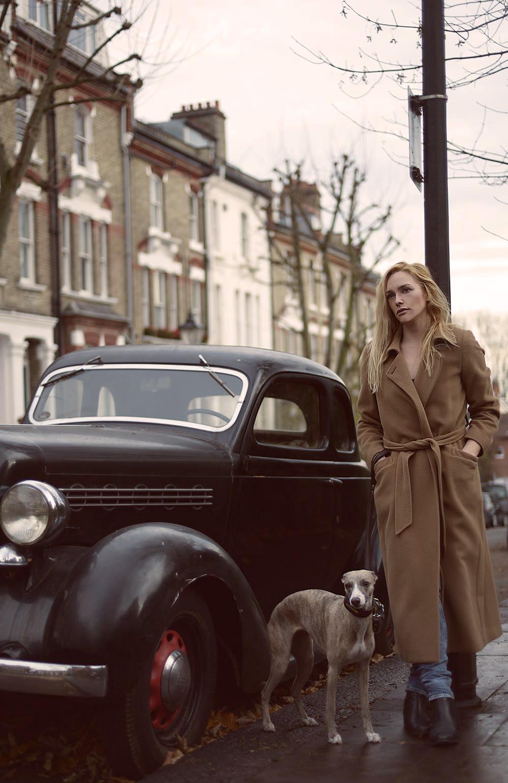 Caroline Towning | London | Whippet | Horse Artist