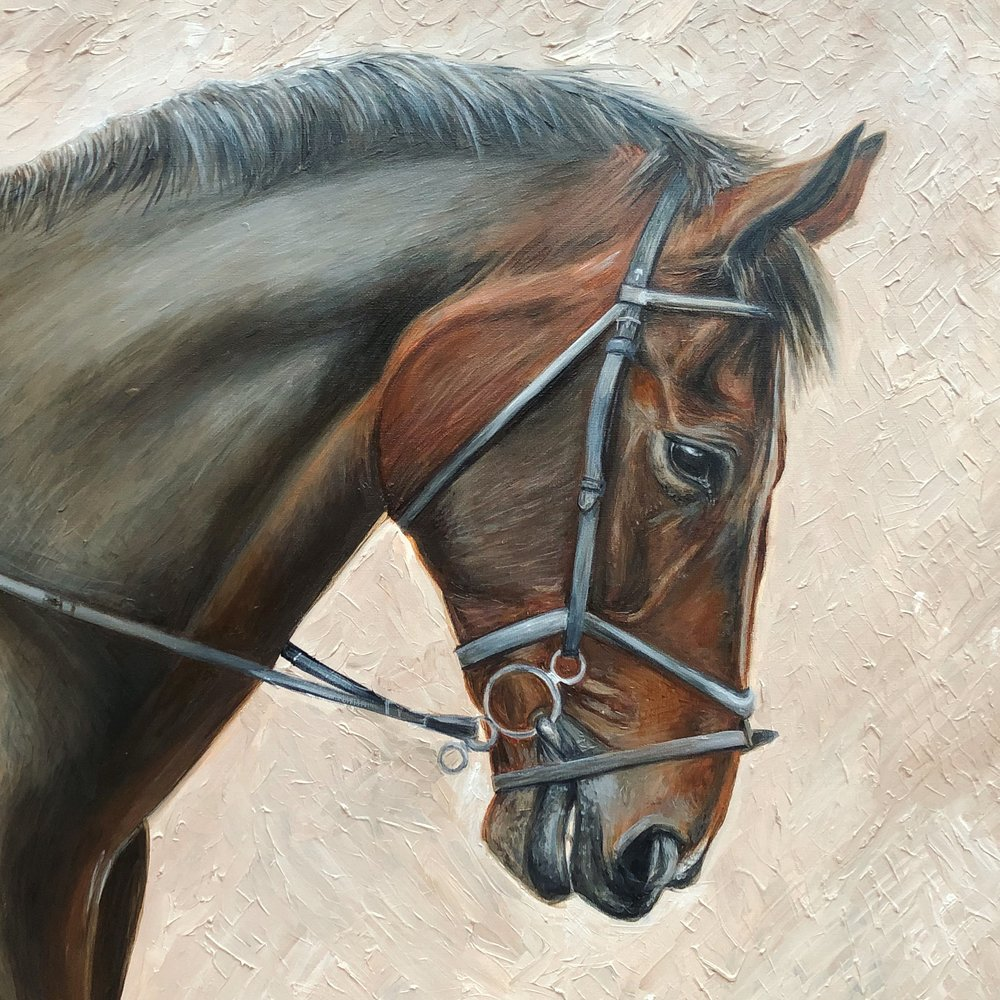 Horse Art | Horse Oil Painting | Horse Artwork