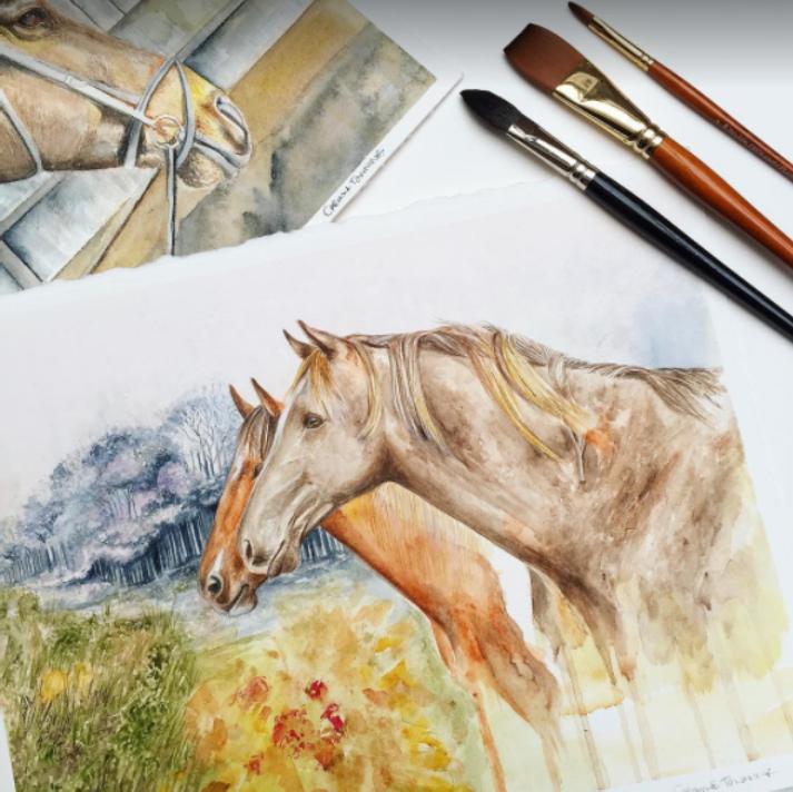 Watercolour Horses | Paint Horses for Sale | Equestrian Art