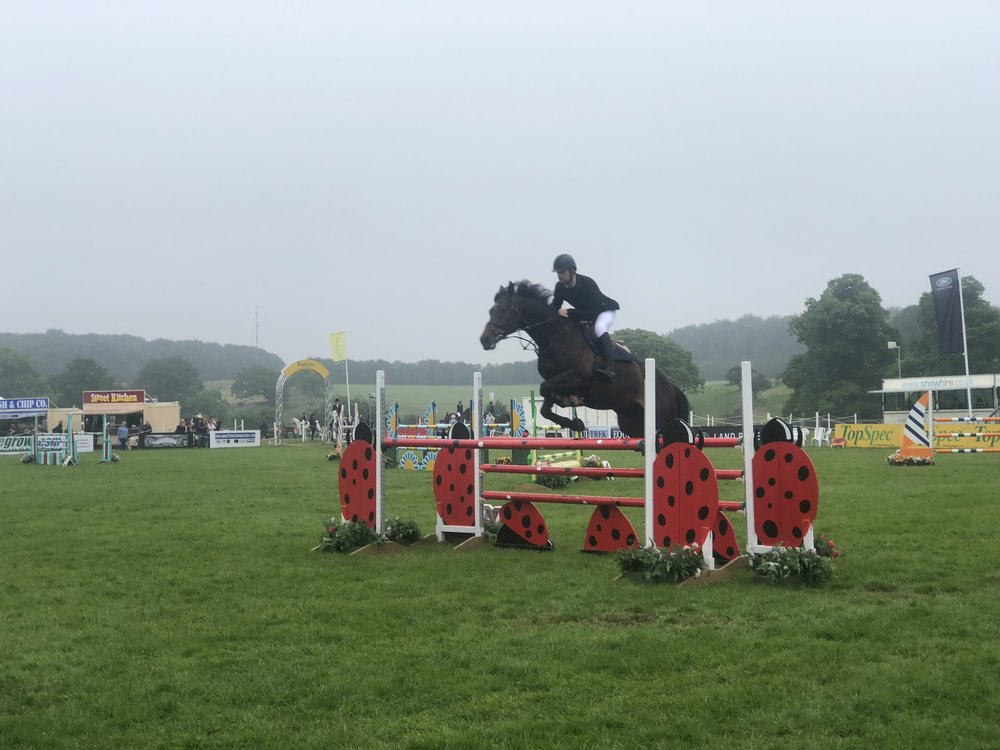 Bramham International Horse | Horse Show | Horse Art