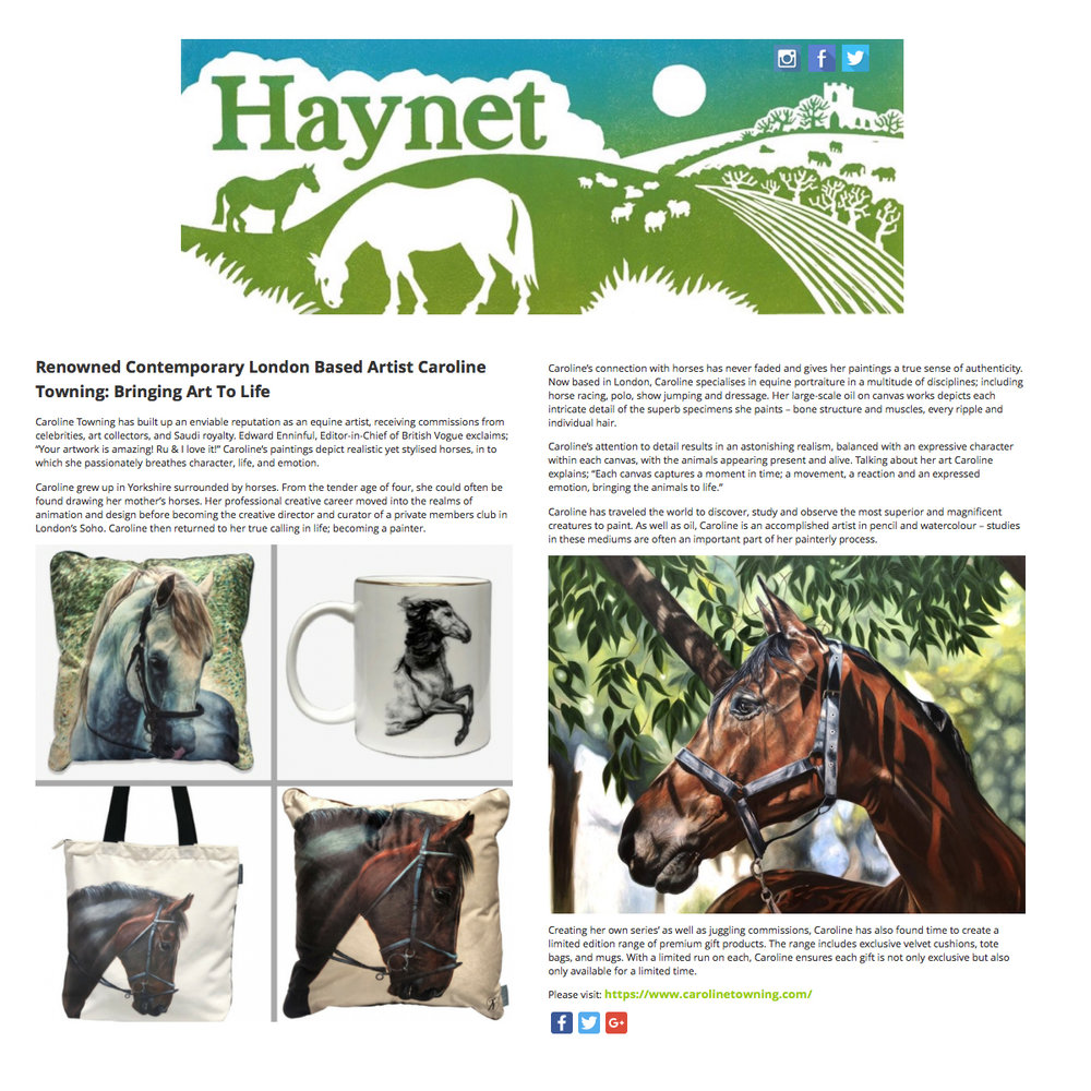 Haynet Equestrian & Country Blog